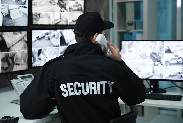 Terceirização da segurança privada: riscos e vulnerabilidades